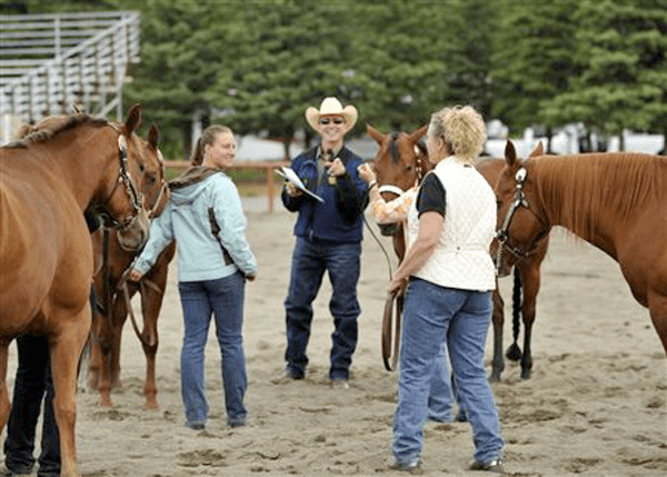 mark sheridan anchorage roping clinic
